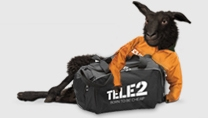 Tele 2 Cheap Sponsor Deals